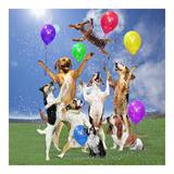 Dogs partying Pósters por  Lund-Roeser