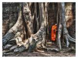 Monk reading in Ta Prohm temple, Angkor Wat Print by Scott Stulberg