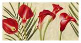 Red Callas Poster by Jenny Thomlinson
