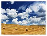 Bales in Field, Tuscany Print