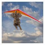 Flying Elephant Kunst af John Lund