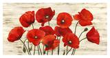 French Poppies Prints by Serena Biffi