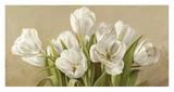 Tulipani bianchi Prints by Serena Biffi