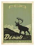 Denali National Park Poster by  Anderson Design Group