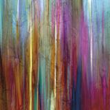 Sunset Falls I Posters af John Butler