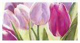 Tulipes Posters by Leonardo Sanna