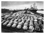First Shipment of Beetles to America, 1956 Lámina por Hans Marx