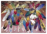 Ritual: Feathered Shields Prints by David Manje