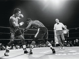 "Sugar Ray Leonard, ""Comeback Fight"" Against Kevin Howard, May 11, 1984 Photographic Print by Vandell Cobb"