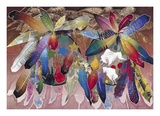 Ritual: Feathered Shields Print by David Manje