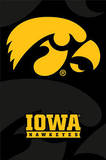 University of Iowa Hawkeyes Photo
