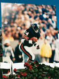 Walter Payton, Memorial Held at Soldier Field Stadium, 1999 Photographic Print by Vandell Cobb