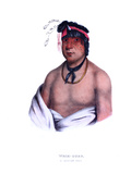 Weshcubb ('the Sweet'), a Chippeway Chief Giclee Print by Charles Bird King