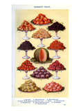Mrs Beeton&#39;s Cookery Book - Dessert Fruit Giclee Print