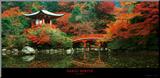 Santuario de Daigo, Kyoto (Japón) Lámina montada en tabla por Umon Fukushima