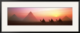 The Great Pyramids of Giza, Egypt Posters by Shashin Koubou