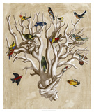 The Ornithologist&#39;s Dream I Poster by Naomi McCavitt