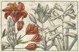 Embellished Arena Botanical I Premium Giclee Print
