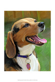 Beagle-Beagle Poster por Robert Mcclintock