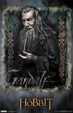 The Hobbit: An Unexpected Journey - Gandalf Prints