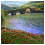 Chris Vest - River Bridge Obrazy