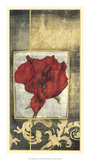 Poppy Poetry IV Premium Giclee Print by Jennifer Goldberger