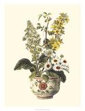 Floral Medley II Giclee Print