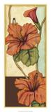 Peacock Hibiscus III Premium Giclee Print by Jennifer Goldberger