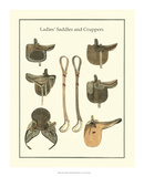 Ladies Saddles Giclee Print