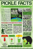 Pickle Facts Chart Pósters