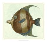 Angel Fish II Giclée-tryk