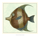 Angel Fish II Giclee Print