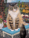 Van Olsen/Cats Coloring Book Book