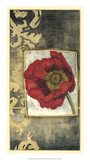 Poppy Poetry III Premium Giclee Print by Jennifer Goldberger