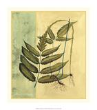 Tropical Fern I Premium Giclee Print