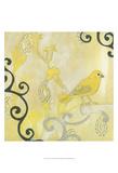 Canary I Poster by Jodi Fuchs