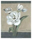 White Tulips II Prints by Marietta Cohen