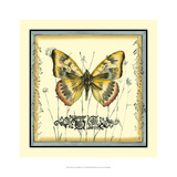 Butterfly and Wildflowers IV Giclee Print by Jennifer Goldberger