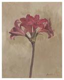 Blooms & Stems III Poster by Marietta Cohen