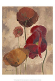 Textured Poppies II Prints by Marietta Cohen