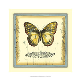 Butterfly and Wildflowers II Giclee Print by Jennifer Goldberger