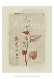 Botanical Respite III Posters by Ken Hurd