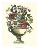 Floral Splendor II Giclée-Druck von Giovanni Piranesi