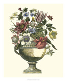 Floral Splendor II Prints by Giovanni Piranesi