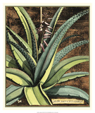 Graphic Aloe III Giclee Print