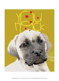 Frisky Pet X Poster by Ken Hurd