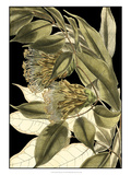 Tranquil Tropical Leaves VI Giclee Print by Vision Studio