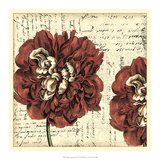 Vintage Composition I Giclee Print by  Vision Studio