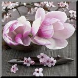 Magnolia Umocowany wydruk autor Catherine Beyler