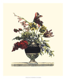 Flowers for June I Giclee Print by Giovanni Baptiste